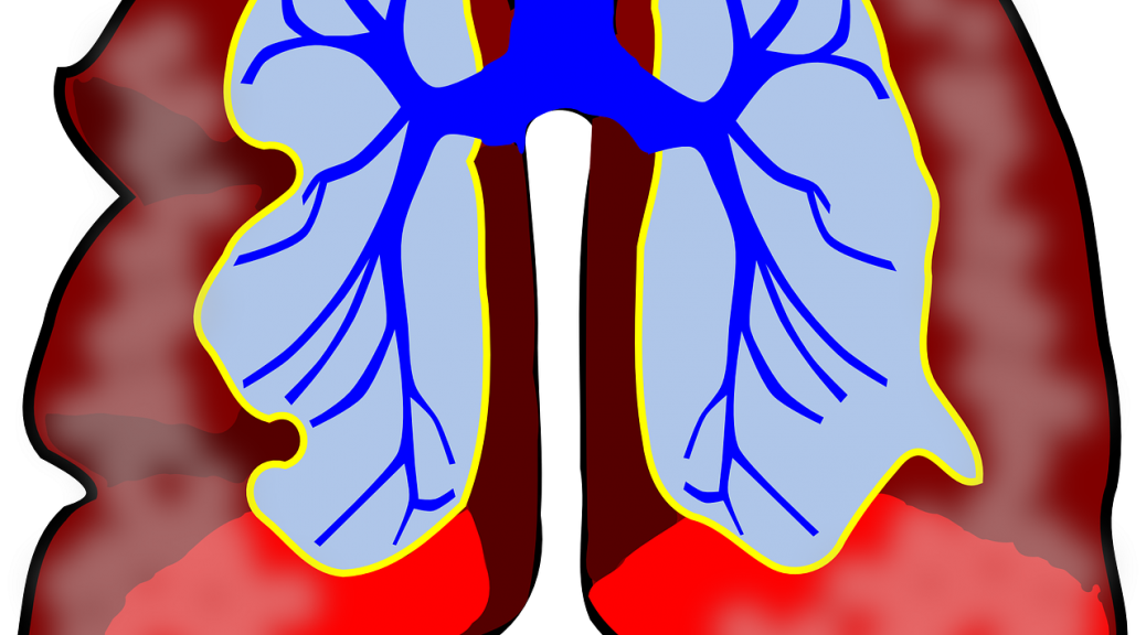 color drawing of lungs